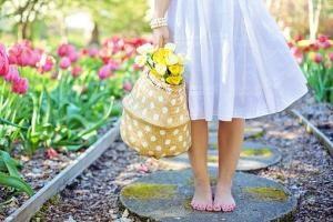 Iglaki – zieleń w ogrodzie przez cały rok